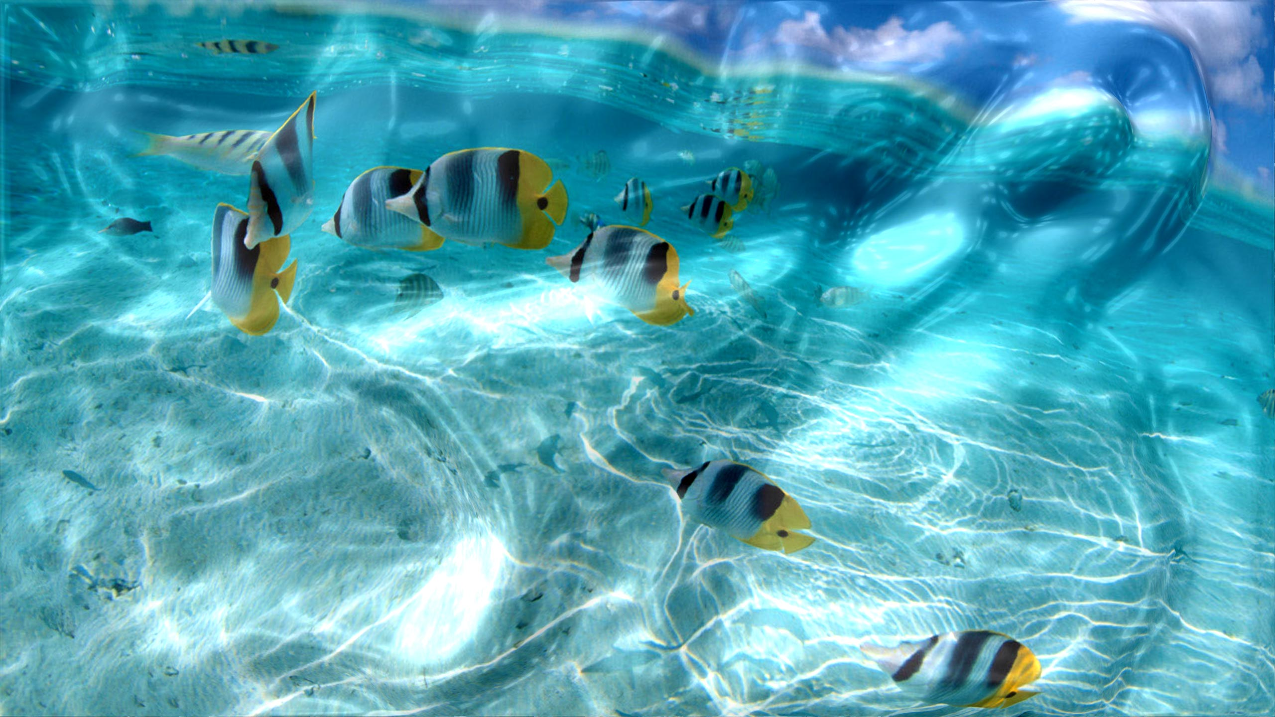 Watery Desktop 3D